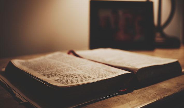 bibel-420x710