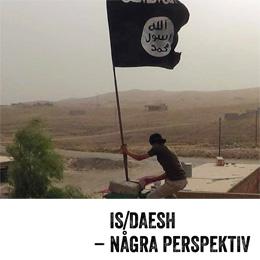 IS_Daesh_omslag_slv