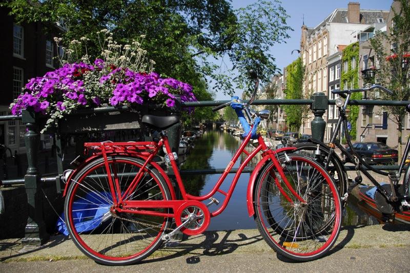 rödcykel