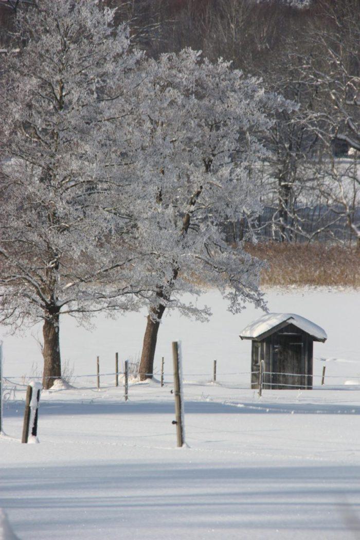 Vinterlandskap med utsikt mot en liten sjöbod nere vid sjön Anten